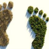 ¿Qué es la huella ecológica y cómo disminuirla?